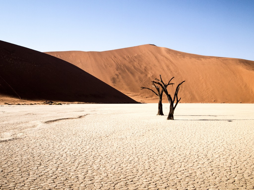 The Big Daddy Dune, Dead Vlei, Sossusvlei Namibia